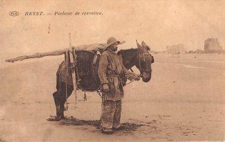 Ansichtkaart Belgie Heyst Pecheur de crevettes Heist Garnalenvisser met paard op het strand Europa HC15343