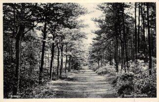 Ansichtkaart Ermelo Bosch en Heide 1937 Veluwe HC15357