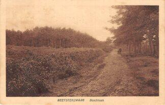 Ansichtkaart Beetsterzwaag Boschlaan 1925 HC15451