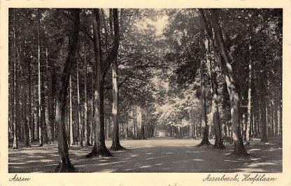 Ansichtkaart Assen Asserbosch Hoofdlaan 1940 HC15465