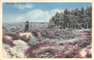 Ansichtkaart Zeist Groeten uit 1956 Heideserie Nr. 7 HC15474