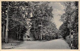 Ansichtkaart Apeldoorn Amersfoortscheweg 1939 HC15519