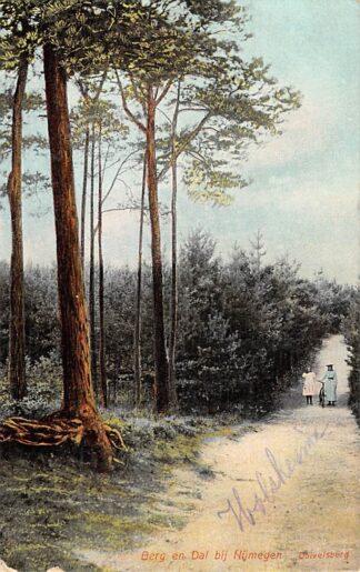 Ansichtkaart Berg en Dal bij Nijmegen Duivelsberg HC15545