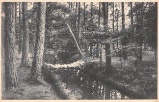 Ansichtkaart Zeist Keienbrug in het Zeister Bosch HC15627