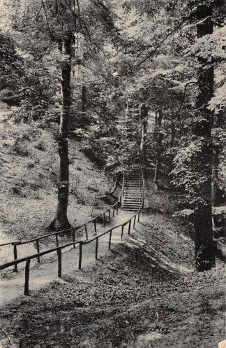 Ansichtkaart Zeddam Montferland Trap oostzijde HC15653