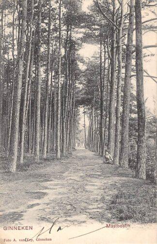 Ansichtkaart Ginneken bij Breda Mastbosch 1905 HC15678