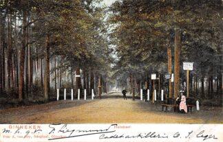 Ansichtkaart Ginneken bij Breda Huisdreef 1902 HC15709