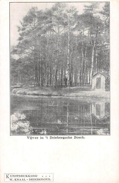Ansichtkaart Driebergen Vijver in 't Driebergsche Bosch HC15859