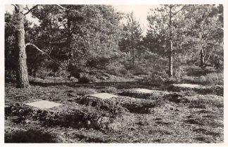 Ansichtkaart Loenen (GD) Veluwe Centrale Begraafplaats der Oorlogsgraven-Stichting Enige der graven 1950 HC15862