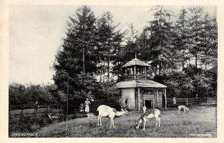 Ansichtkaart Driebergen Hertenkamp 1935 HC15864