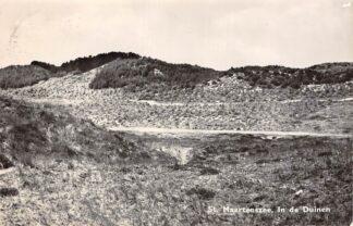 Ansichtkaart Sint Maartenszee In de Duinen 1961 HC15865