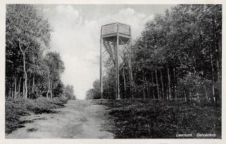 Ansichtkaart Leersum Belvedere met uitzichttoren jaren 30 HC15922