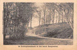 Ansichtkaart Hoog-Soeren Hoogsoeren de Koninginnenbank in het Bosch 1902 HC15956