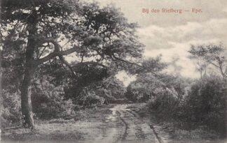Ansichtkaart Epe Bij den Rietberg 1916 Veluwe HC15965