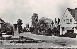 Ansichtkaart Borculo Nat. Monument Burg. Bl.oemersstraat 1969 HC15967