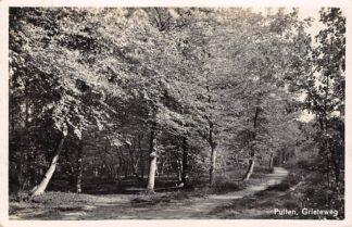 Ansichtkaart Putten Grieteweg 1939 HC16037