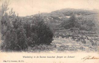 Ansichtkaart Bergen (NH) Wandeling in de duinen tusschen Bergen en Schoorl 1905 HC16089