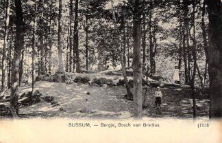 Ansichtkaart Bussum Bergje, Bosch van Bredius 1908 HC16179