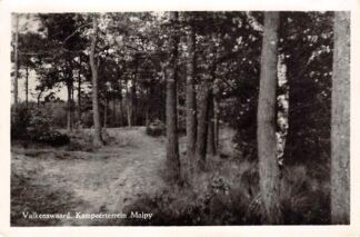 Ansichtkaart Valkenswaard Kampeerterrein Malpy Camping 1955 HC16501
