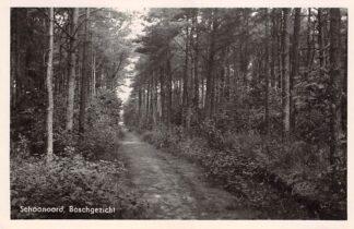 Ansichtkaart Schoonoord Boschgezicht rond 1940 HC16789