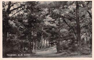 Ansichtkaart Hooghalen In de bossen 1953 HC16794