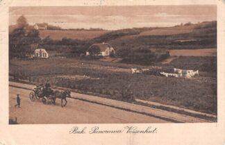 Ansichtkaart Beek (GD) Panorama Vossenhut met paard en wagen 1913 HC16853