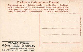 Ansichtkaart Heerenveen Lychnogravure Reclame Greve's  Levertraan Fantasie Dame met bloemtak HC16914