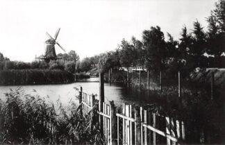 Ansichtkaart Zo was Dordrecht Langs Oranjelaan naar Noordendijk Molen de Nachtegaal omstreeks 1910 HC16927