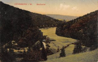 Ansichtkaart Duitsland Arnsberg i. W. Seufzertal 1911 Deutschland Europa HC17019