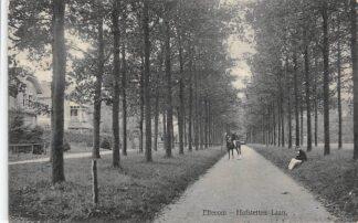 Ansichtkaart Ellecom Hofstetten Laan 1912 HC17197