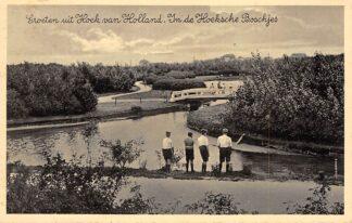 Ansichtkaart Hoek van Holland Groeten uit 1930 In de Hoeksche Boschjes HC17346