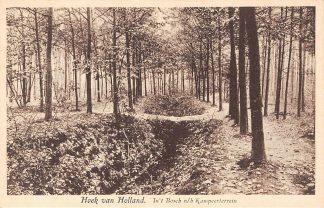Ansichtkaart Hoek van Holland In 't Bosch n/h Kampeerterrein HC17347