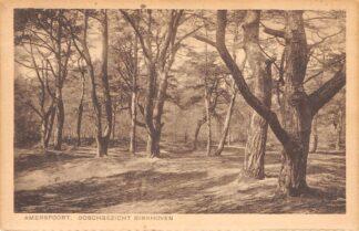 Ansichtkaart Amersfoort Boschgezicht Birkhoven1930 HC17449