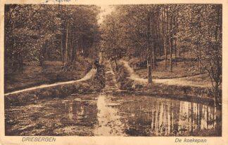 Ansichtkaart Driebergen De Koekepan HC17451
