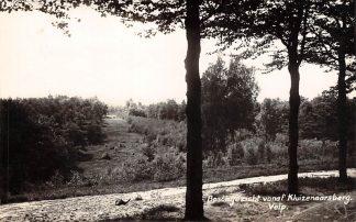 Ansichtkaart Velp Boschgezicht vanaf Kluizenaarsberg Newo fotokaart 1934 HC17456