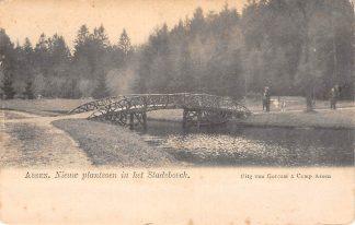 Ansichtkaart Assen Nieuw plantsoen in het Stadsbosch rond 1900 HC17484