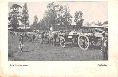 Ansichtkaart Zuid-Afrika Boerenoorlog Pretoria Een Ossenwagen South Africa Afrika HC17489