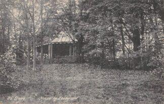 Ansichtkaart De Steeg Koepel op Rhederoord 1913 HC17695