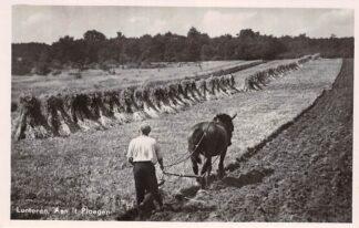 Ansichtkaart Lunteren Boer met paard aan 't Ploegen HC17713