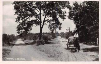 Ansichtkaart Lunteren Goorsteeg met paard en wagen HC17714