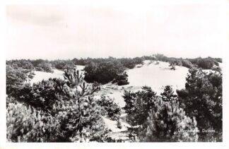Ansichtkaart Udenhout Udenhoutse Duinen 1963 HC17762