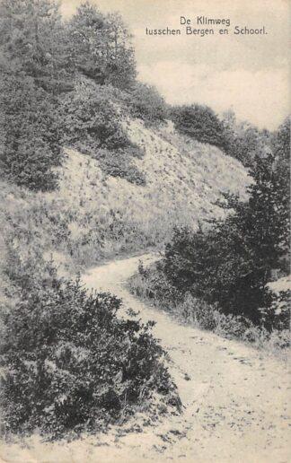 Ansichtkaart Bergen (NH) De Klimweg tusschen Bergen en Schoorl 1931 HC18250