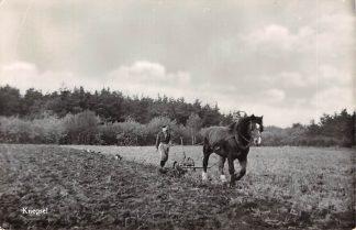 Ansichtkaart Knegsel Eersel Ploegende boer met paard 1961 Noord-Brabants Dorpsleven HC18387