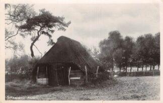 Ansichtkaart Assel Schaapskooi 1949 Apeldoorn Veluwe HC18530