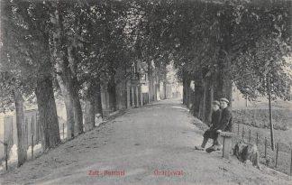 Ansichtkaart Zaltbommel Oranjewal 1912 HC18555