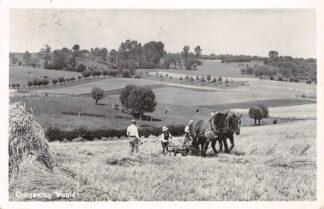 Ansichtkaart Vaals Dorsende boeren met paard 1954 Limburg HC18566