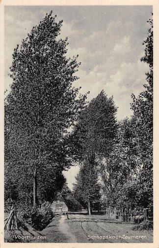 Ansichtkaart Voorthuizen Schaapskooi Zeumeren 1924 Veluwe HC18616