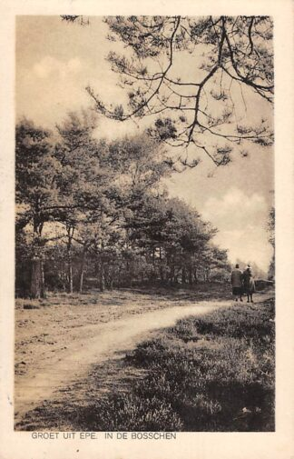 Ansichtkaart Epe Groet uit 1933 In de Bosschen Veluwe HC18626