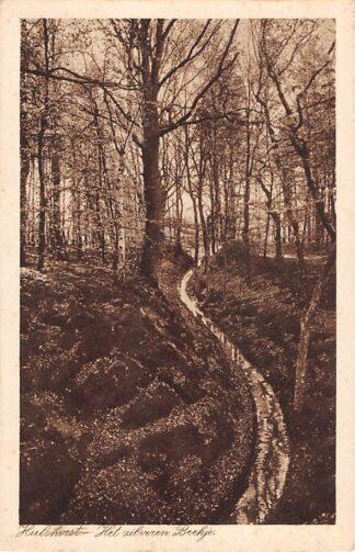 Ansichtkaart Hulshorst Het zilveren Beekje Veluwe 1932 HC18629