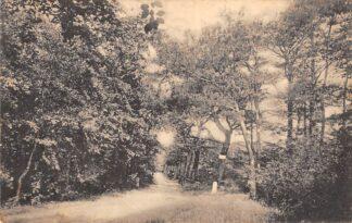 Ansichtkaart 's-Graveland Spanderswoud Hilversum 1921 HC18792